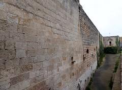 Polignano a Mare (Puglia-Italia). Muralla (santi abella) Tags: polignanoamare apulia puglia italia