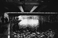 (a.pierre4840) Tags: olympus om2n zuiko 24mm f28 35mmfilm kodak kodaktrix trix bw blackandwhite monochrome noiretblanc urban decay canal london england silhouette