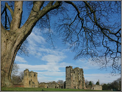 Ashby de la Zouch Castle (Jason 87030) Tags: castle leicestershire visit menber trust englishheritage architecture ruins for grand tree trunk bare naked branch view composition weather sky attraction