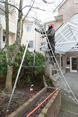 Silent Gardener's gardener using electric chain saw (D70) Tags: silent gardeners using electric pruning saw burnaby britishcolumbia canada chain