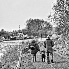 141 of Year 5 - Marcher le chien (I'm Tim Large) Tags: dog walk walking 365 141 canal towpath slimbridge gloucestershire fuji fujifilm xpro2 55200mm monochrome