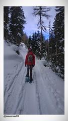Valérie Kuki - Raquettes et Pompon (jamesreed68) Tags: forêts neige cold hiver winter alpes alps mountain tavé pleureur suisse valais brunet paysage nature schweiz swiss switzerland ciel montagne kuki
