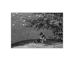 Writing Home (+Pattycake+) Tags: youngwoman girl sitting writing concentration street branch tree leaves blackandwhite bw monochrome wall bricks grass shadow shade sunshine summer candid unposed garden norwich dappling light brickwork portrait relaxing
