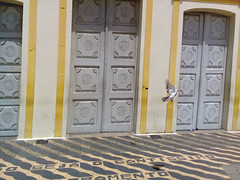 the dove in front the church (Líslei Kreulich) Tags: dove church door baroque