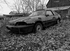 Rusty Ford mustang (Mike A 1042) Tags: ford mustang grass field rust fixerupper paint glass flattires trees barn fall leaves
