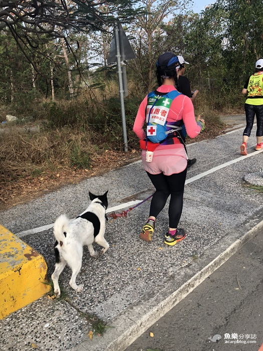 【台南旅遊】2019台南古都馬拉松│三天兩夜美食之都小旅行 @魚樂分享誌