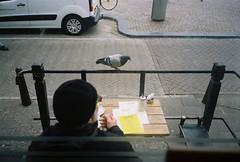 (Bárbara Lanzat) Tags: 35mm film analog mjuii kodak200 colorplus200 diary olympusmjuii mju2 amsterdam filmisnotdead ishootfilm bárbaralanzat