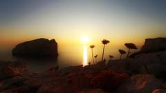Fabulous Sunset (endresárvári) Tags: sea summer sun sunset sardinia italy canon rock yellow claret mediterranean flower wildflower flowers colorful holiday