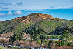 Flower Power - Traffic to see poppies (mutovkin) Tags: 2019 california flowers g9 hills lumix lumixg9 panasonic panasonicg9 poppies superbloom colorful spring wildflowers