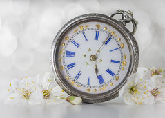 time for Spring (Emma Varley) Tags: pocket watch vintage antique stilllife indoor blossom spring macromondays timepiece