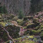 Mossy rocks thumbnail