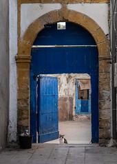 Essaouira, cat in doorway (RaKra42) Tags: katze katzen marokko reise reisen säugetier tiere travelling africa animal animals blue cat colors domesticcat door feline kitty lifestyle mammals morocco pussycat streetkatze travel wildlife