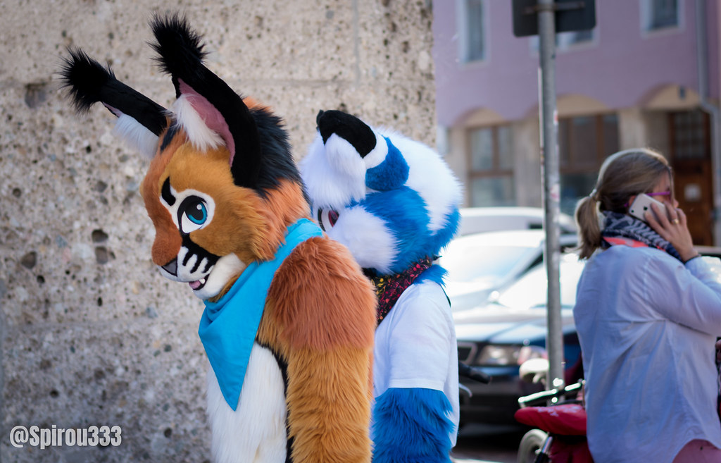 The World's Best Photos of furry and fursuitwalk - Flickr