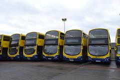 Dublin Bus SG218 162-D-11460 - SG5 142-D-12026 - VG11 08-D-70011 - SG259 162-D-23229 - VG10 08-D-70010 (Will Swain) Tags: dublin phibsboro depot 16th june 2018 bus buses transport travel uk britain vehicle vehicles county country ireland irish city centre south southern capital sg218 162d11460 sg5 142d12026 vg11 08d70011 sg259 162d23229 vg10 08d70010 vg 10 sg 259 11 5 218