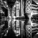 reflections in water thumbnail