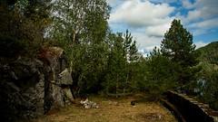 Jerpeneset (audun.bie) Tags: norway austagder setesdalen bygland åraksfjorden jerpeneset abandoned nature road trees clouds