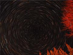 Startrails (Ostseetroll) Tags: deu deutschland geo:lat=5403901045 geo:lon=1068877280 geotagged pönitzamsee scharbeutz schleswigholstein startrails nachtaufnahme nightshot langzeitbelichtung longexposure sternenhimmel sternspuren olympus em5markii