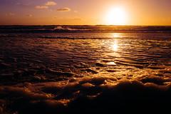 L1000252 (Eduardo Acosta Photography) Tags: ambulantphotographer beach leicaq ocean people sand santamonica seagulls street water pier
