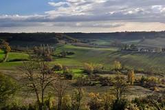 vu depuis Castelnaud de ... (jean-marc losey) Tags: france occitanie tarn castelnauddemontmiral paysage automne autumn randonnée bocage d700
