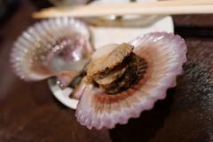 あっぱ貝 (HAMACHI!) Tags: tokyo 2019 japan food foodporn foodie foodmacro meat beef 肉山 nikuyama kichijoji restaurant diningrestaurant lumix lumixdclx100m2 dclx100m2 エリンギ ヒオウギガイ 貝 clam shellfish あっぱ貝