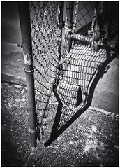 Lomography (Black and White Fine Art) Tags: lomography lomografía lomo holga holga120n plasticcamera camaraplastica camaradejuguete toycamera kodakbw400cnexp2007 chromogenicfilm developedinkodakd76 kodakfixer bn bw sombrasa shadows sanjuan oldsanjuan viejosanjuan puertorico