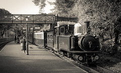Taliesin at Tan Y Bwlch (chrisjc90) Tags: ffestiniog train wales snowdonia heritage ffwhr