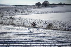 they must be crazy .... (Redheadwondering) Tags: sonyα7ii snow salisburyplain wiltshire winter landscape tracks byway minolta minolta100200mm 119picturesin2019 30crazy 30 crazy bicycles cyclists bikes