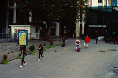 20180913 lindholmen open day - canon f1n - canon 50mm 1.4 fd - ektachrome 100 plus (Sina Farhat - Webcoast) Tags: light ljus höst lindholmen centralstationen autumn fall cranes kranar lindholmenopenday2018 gothenborg göteborg sweden sverige home hemma 031 bokeh skärpedjup 35mm raw lightroomclassiccc analog film positiv slidefilm e6 kodak ektachrome100plus expiredfilm tetenalcolortece6kit leaves löv dslrscanned tree sky flower bird forest