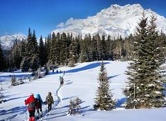 Snowshoeing in Banff area (OldDogNewTrick) Tags: feb212019 calgaryevergreens snowshoe banff cascademountain