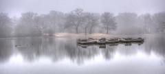 Misty Hollows (ArtGordon1) Tags: hollowpond leytonstone london england uk winter february 2019 davegordon davidgordon daveartgordon davidagordon daveagordon artgordon1 reflections reflection boats rowingboats