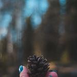 A little cone thumbnail