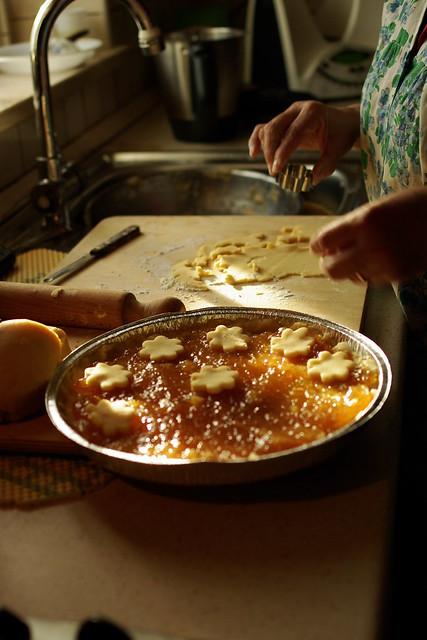 Crostata di marmellata (6)