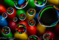 11 (munn1) Tags: 2019031752weeks week11theme nikon nikor macro 10528macro d4s alienbees b800 cybersync water mms candy color colour repetition week112019 startingtuesdaymarch122019 52weeksthe2019edition