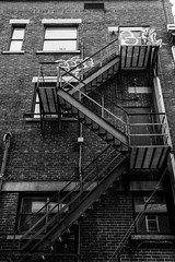 Au secours !!! (Patrick Boily) Tags: quebec street photo building edifice black white escalier stairs