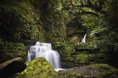 Catlins - New Zealand