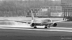 TUI B787 (Ramon Kok) Tags: 787 7878 ams avgeek avporn aircraft airline airlines airplane airport airways amsterdam amsterdamairportschiphol arke aviation boeing boeing787 boeing7878 dreamliner eham holland or phtfl schiphol schipholairport tfl tui tuiairlines tuiairlinesnetherlands thenetherlands luchthavenschiphol noordholland nederland nl