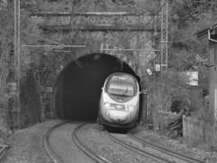 domo II set 79 #51 (train_spotting) Tags: carciano sbbcffffs etr610 rabe503 alstom papero ec eurocity nikond7100