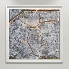Santa Rosa Beach, FL, USA (Bart van Damme) Tags: landdevelopment santarosabeach florida usa bartvandamme satelliteart landscapetypology zerpgallery manmadelandscapes studiovandamme artphoto transitionallandscape