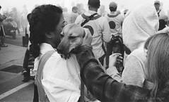 muting the dog's ears during firecrackers (steve: they can't all be zingers!!! (primus)) Tags: canonae1p canonfd50mmf14 chromenose kodaktrix400tx canon primelens prime primecanonlens film filmcamera kodakfilm taiwan taichungtaiwan taichung longjing longjingdistrict