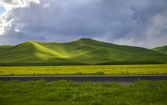 Green Hills of the Central Valley (dcnelson1898) Tags: california southerncalifornia lakeelsinore losangeles interstate5 i5 travel traffic vehicles unitedstates usa america freeway highway