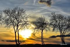 (Jehanmi) Tags: thebeautyofnature nikon clouds nuage ciel sky coucherdesoleil sunset nature skyscape dreamscape landscape