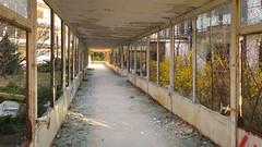 Okrąglaki (piotr_szymanek) Tags: okraglaki building abandoned 1k 20f 5k 10k