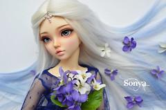 DSC_2167 (sonya_wig) Tags: fairytreewigs wig bjdwig minifeewig bjd bjdminifee minifeechloe handmadedoll bjddoll dollphoto fairyland fairylandminifee minifee chloe bjdphotographycoloringhair