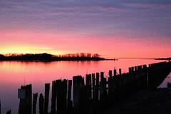 Pink Harbor (Mïk) Tags: graysharbor aberquiam aberdeenwa hoquiamwa washington notheotherwashington harborveiwingtower