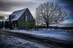The tree and the old abandoned wooden shed in winter (Peter's HDR hobby pictures) Tags: petershdrstudio hdr abandoned lostplace winter tree sky snow verlassen verlassenerort baum himmel schnee