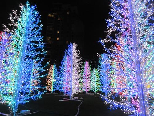 Canary Wharf Winter Light Festival