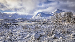 Winter at Loch Ba, Rannoch Moor-2903 (Splendid What) Tags: 2019 frozen ice january lochba mist rannochmoor reflections scotland sun trees water glencoe landscape winter snow