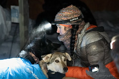 _ROS3417-Edit.jpg (Roshine Photography) Tags: dogs yukonquest dawson winter dogyard 36hourrestart huskies environmental yukonterritory snow dawsoncity yukon canada ca