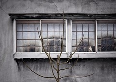 kenopsia (gro57074@bigpond.net.au) Tags: quiet hyperempty vacant atmosphere forlorn 2019 february color colour nikkor 70200mmf28 d850 nikon winter japan abandoned guyclift towadashi okuse aomoriken