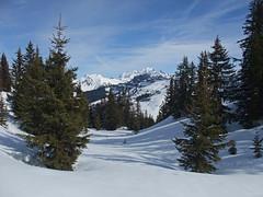 DSCF3731 (Laurent Lebois ©) Tags: laurentlebois france nature montagne mountain montana alpes alps alpen paysage landscape пейзаж paisaje savoie beaufortain pierramenta arèchesbeaufort